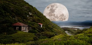 Pierde peso con la Luna
